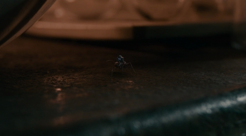 ant-man014