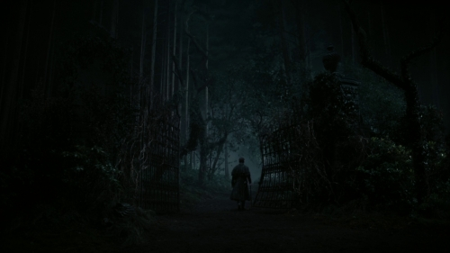 DarkShadows23