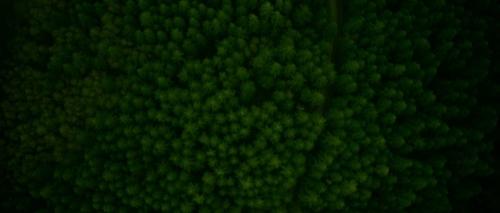 greenroom015