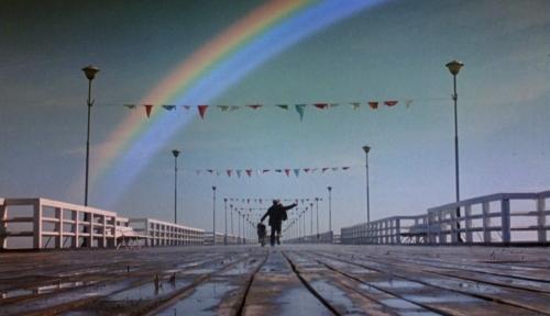 rainbowthief065