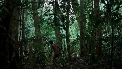 TropicalMalady44