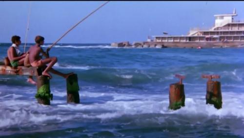 Alexandria Why 002