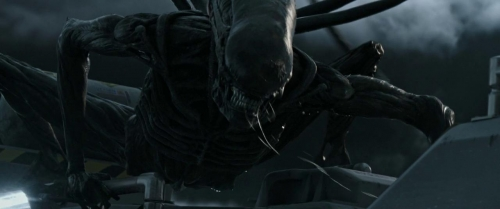 Alien Covenant048