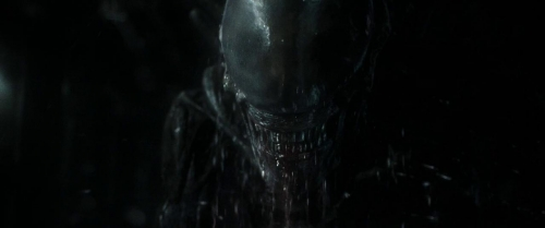 Alien Covenant054