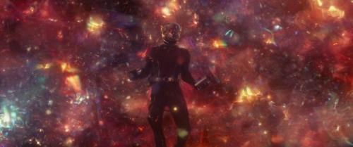 Ant Man  The Wasp 059