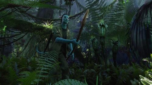 Avatar 019