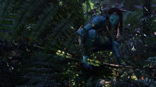 Avatar 022