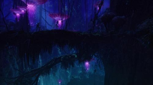 Avatar 028