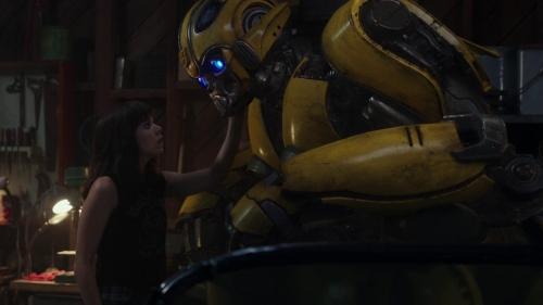 Bumblebee 023