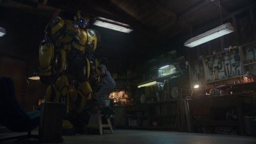 Bumblebee 033