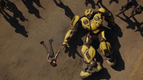 Bumblebee 044