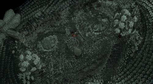 Coraline 052