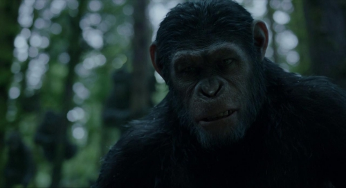 Dawn of the Planet of the Apes 007