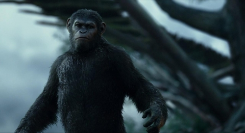 Dawn of the Planet of the Apes 018