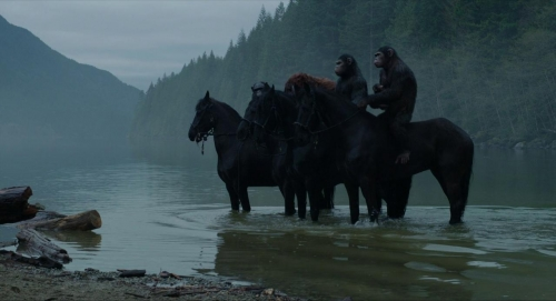 Dawn of the Planet of the Apes 022