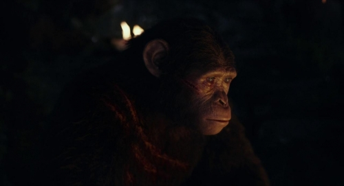 Dawn of the Planet of the Apes 028