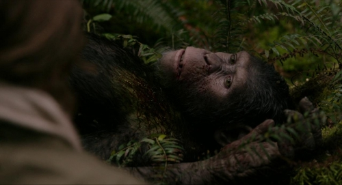 Dawn of the Planet of the Apes 045