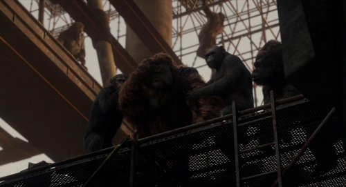 Dawn of the Planet of the Apes 059