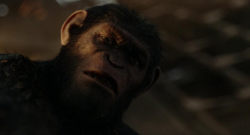 Dawn of the Planet of the Apes 060