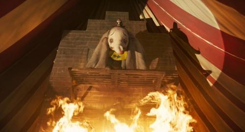 Dumbo 021