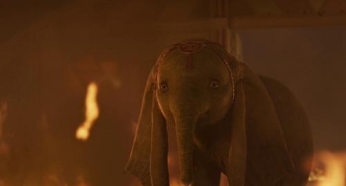 Dumbo 046