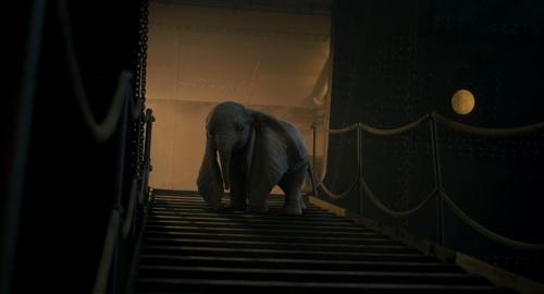 Dumbo 053