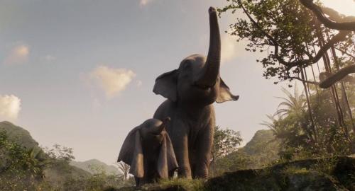 Dumbo 061
