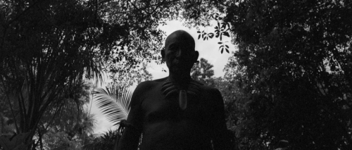 Embrace The Serpent 045