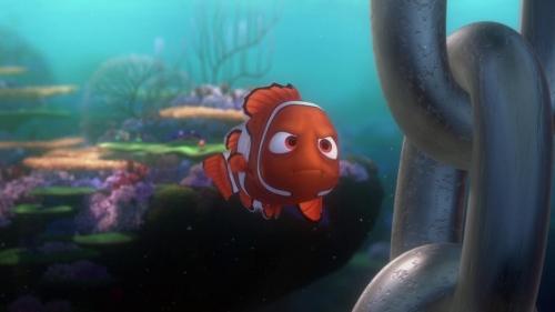 Finding Nemo 013