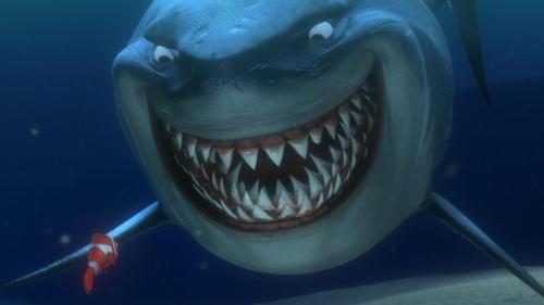 Finding Nemo 016