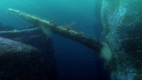 Finding Nemo 023