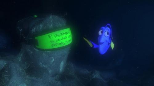 Finding Nemo 026