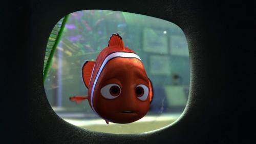 Finding Nemo 034