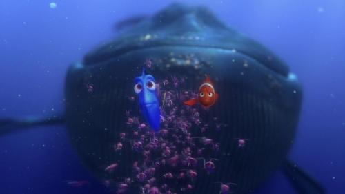 Finding Nemo 041
