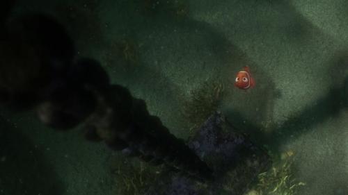 Finding Nemo 057