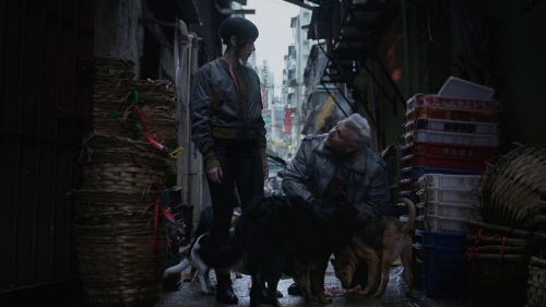 Ghost in the Shell (2017) 017