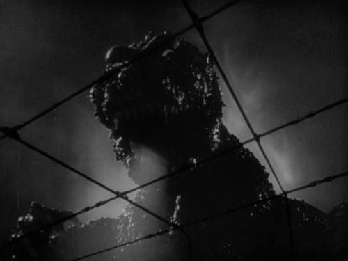 Godzilla 039
