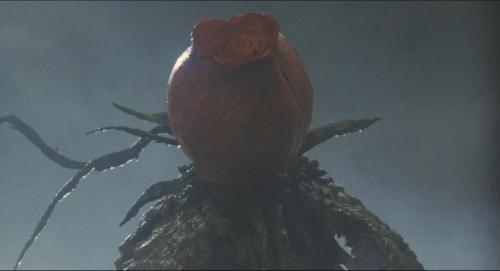 Godzilla Vs Biollante 025