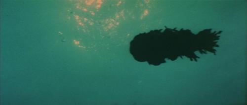 Godzilla Vs Hedorah 013