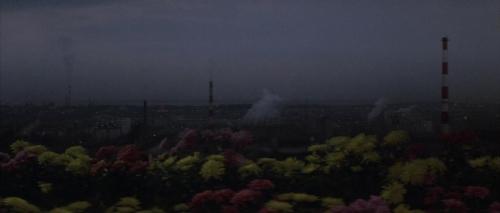 Godzilla Vs Hedorah 029