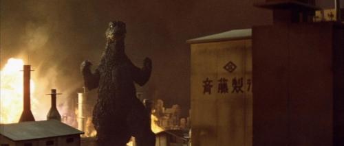 Godzilla Vs Mechagodzilla 021