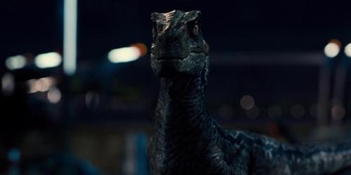 Jurassic World 062