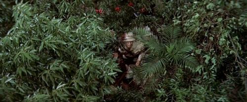 King Kong Vs Godzilla 026