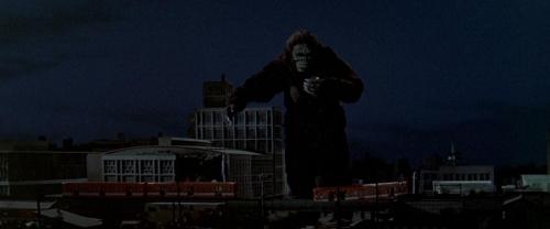 King Kong Vs Godzilla 047