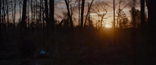 Little Woods 002