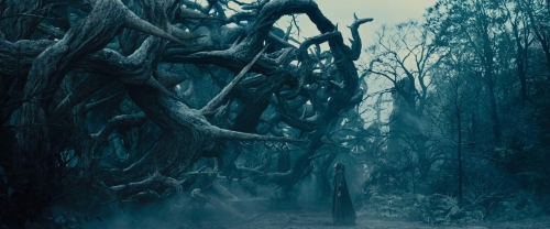 Maleficent 035