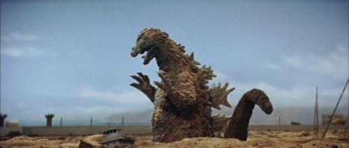 Mothra Vs Godzilla 021