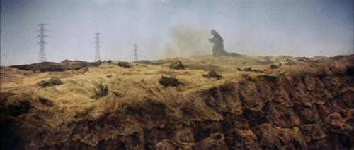 Mothra Vs Godzilla 032