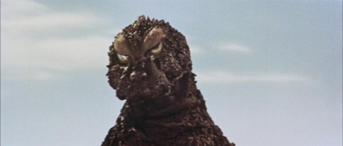 Mothra Vs Godzilla 035
