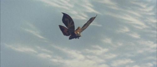 Mothra Vs Godzilla 036